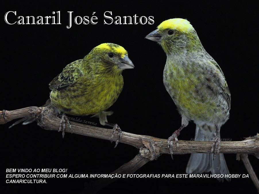 Canaril José Santos