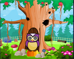 Owl Escape Solucion