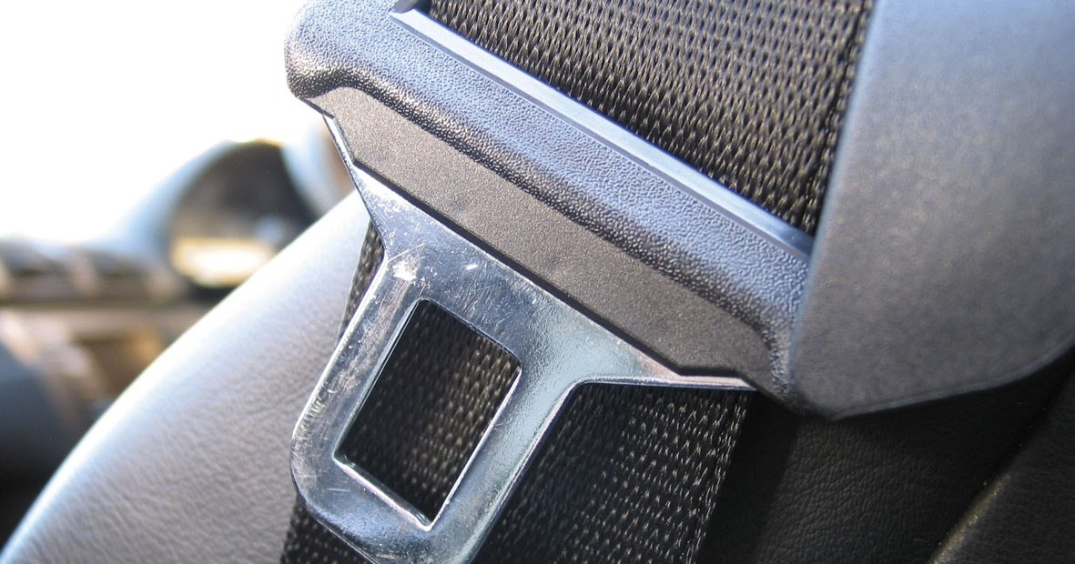 seat belt importance essay Why seatbelts are important essay seat belts save lives in cars, so it seems logical that they fire, firefighter, and safety kids activities.