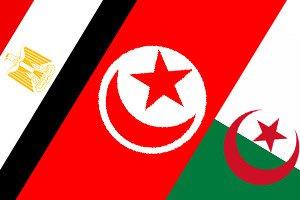 مصر و تونس و الجزائر و كل العرب يد واحده