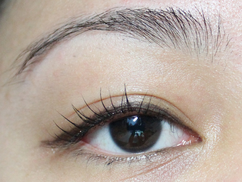 Get Lash Perfect In A Flash With Japonesque The Skin And Beauty Blog