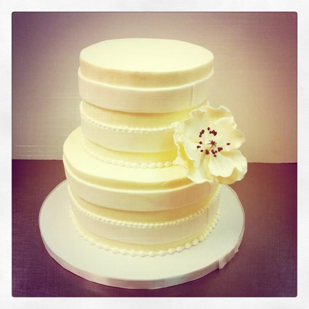 Polkadots Cupcake Factory: Spring weddings and Texas theme cookies!