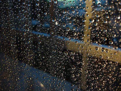 Mirando por la ventana mientras llueve...