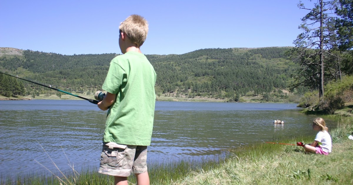In search of wild trout fishing for Trout fishing new mexico map