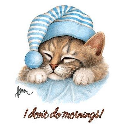 trött på morgonen