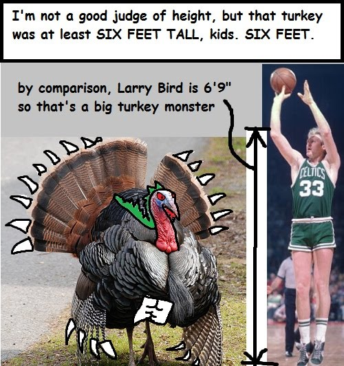 giant turkey