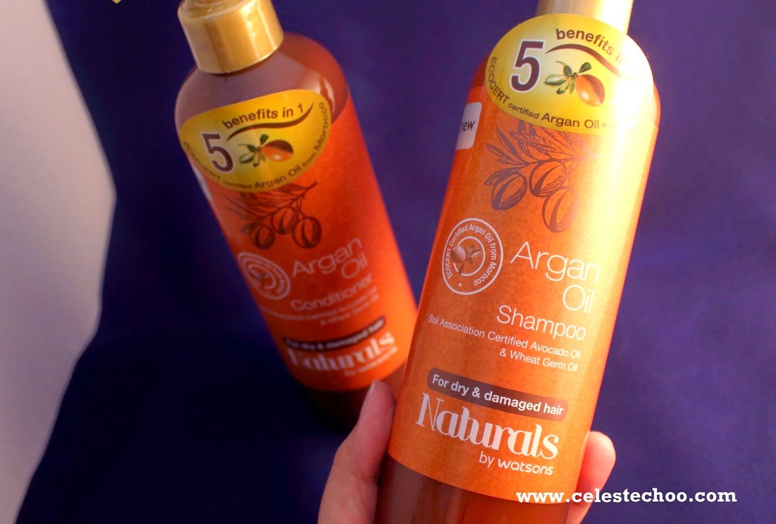 top-shampoo-watsons-argan-oil