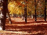 De otoño setbre