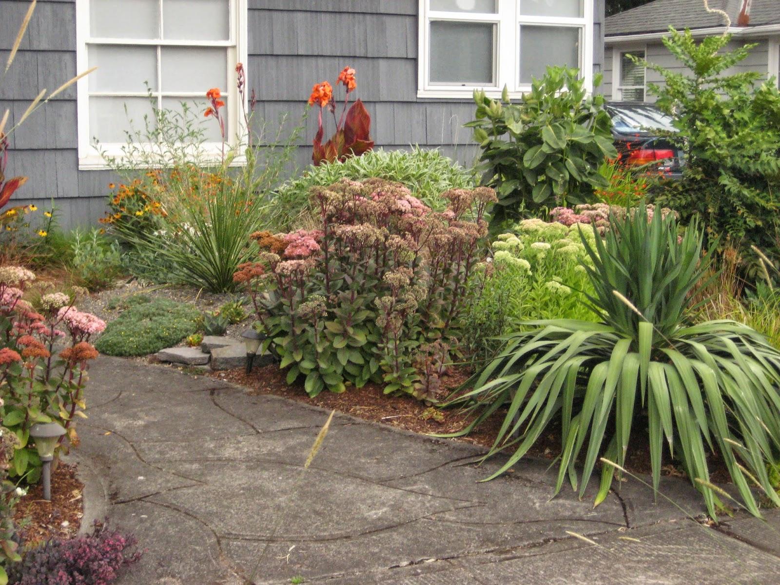 Just a Girl With a Hammer: A Portland Garden
