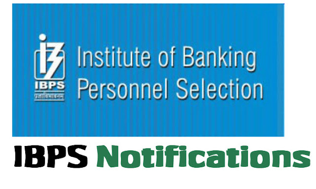 ibps Notifications www.ibps.in
