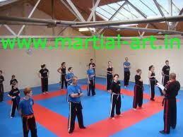 Martial arts coaching
