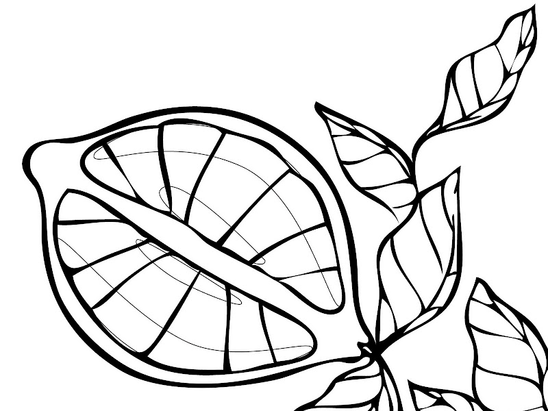 Lemons Fruit Coloring Pages To Kids title=