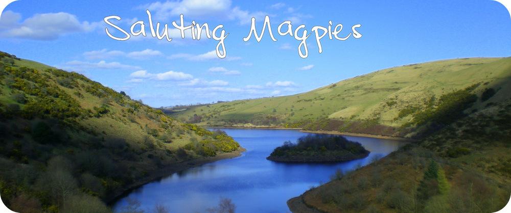 Saluting Magpies
