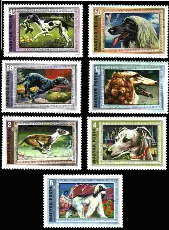 1972年ハンガリー共和国 ハンガリアン・グレーハウンド(サルーキ?) アフガン・ハウンド アイリッシュ・ウルフハウンド ボルゾイ グレーハウンド ウィペット アフガン・ハウンドの切手