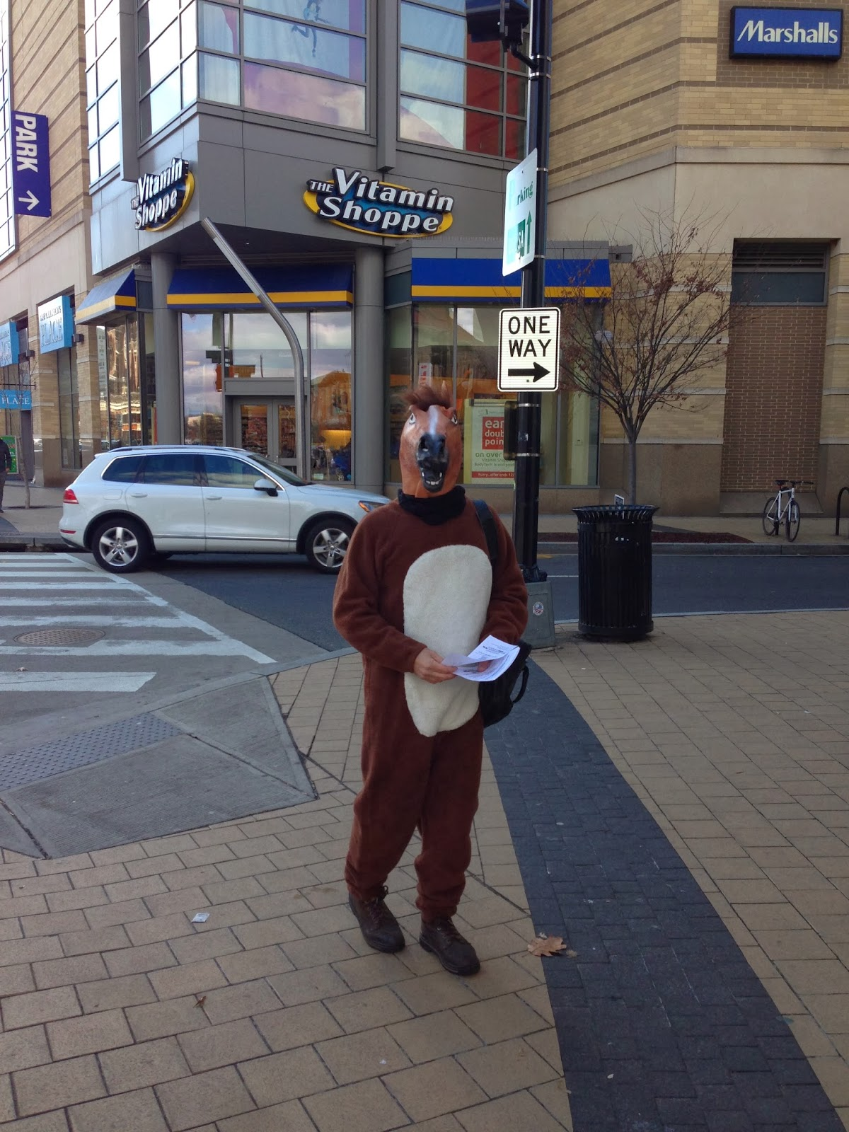 Funny Horse Mask Gif Of those funny horse masks