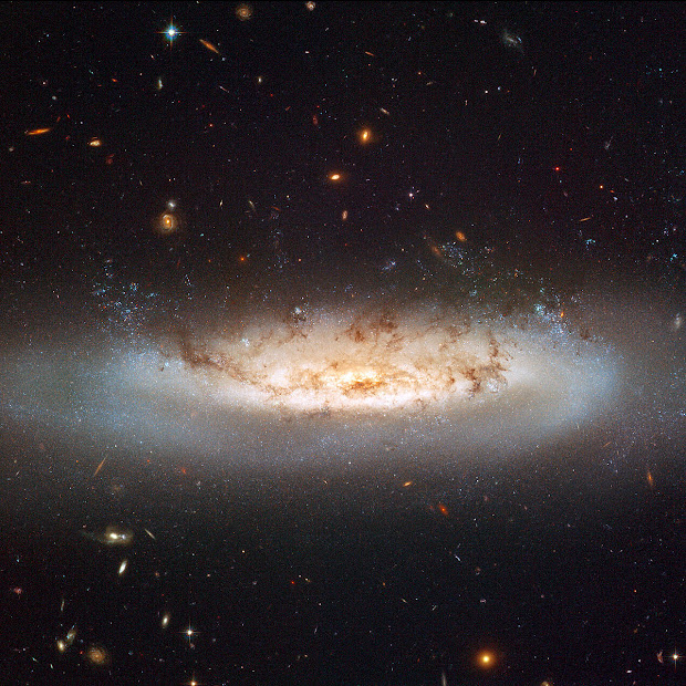 Stripped Spiral Galaxy NGC 4522 portrayed by Hubble ACS