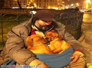 humanity kemanusiaan