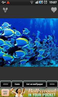 BestAppsForAndroid_Underwater_Aquarium_Wallpapers