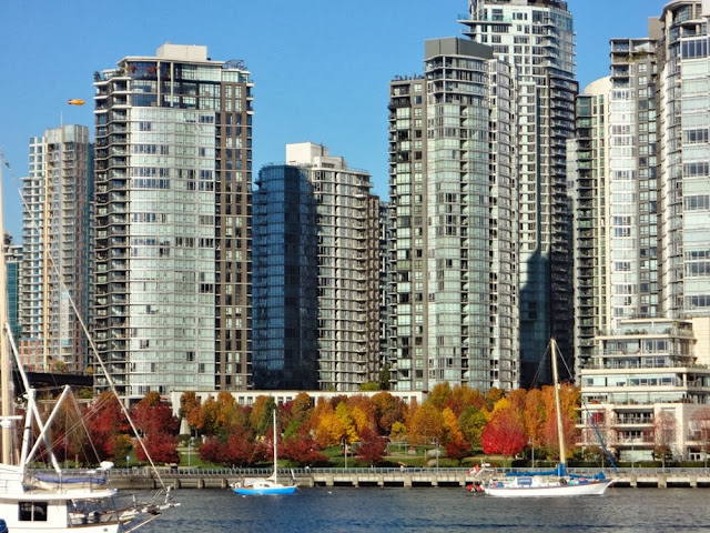 Fall foliage, False Creek Yaletown, Vancouver