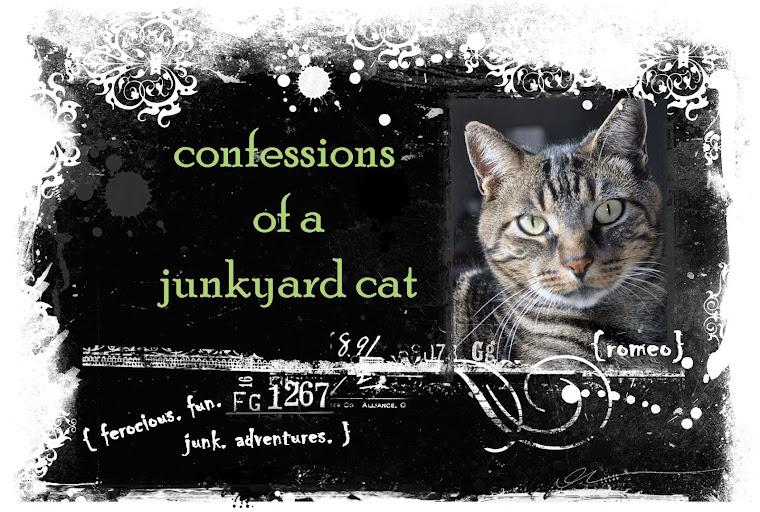 Confessions of a Junkyard Cat