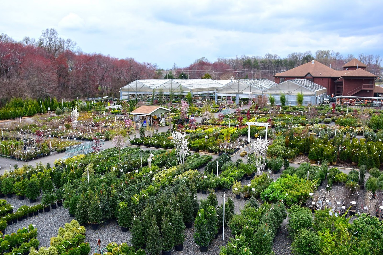 Local First Friday Merrifield Garden Center