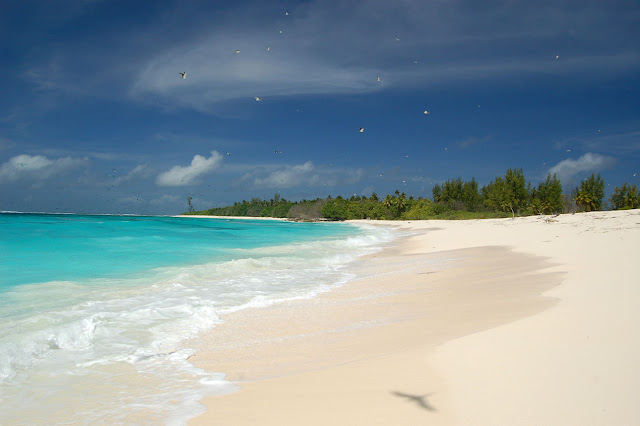 belas fotos praia