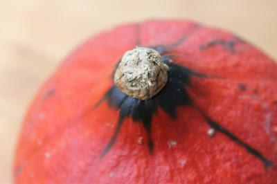 papillonsdonyx blog suisse foodmood octobre recette cuisine