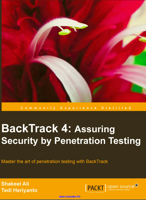 Penetration testing business plan