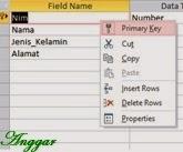 Membuat primary key pada field nim
