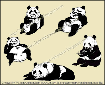 panda bears illustration