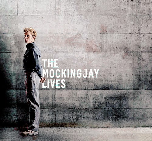 Hunger+Games+Mockingjay
