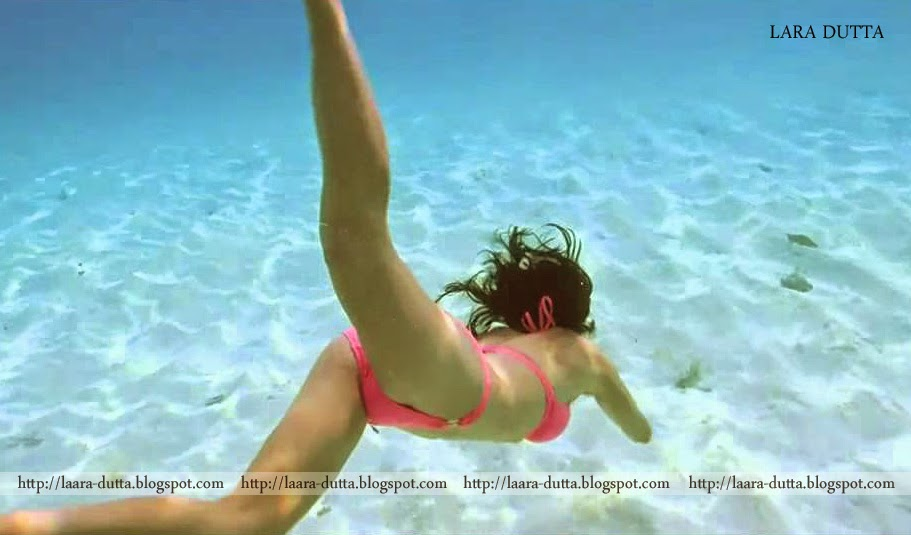 bikini contest babes nude