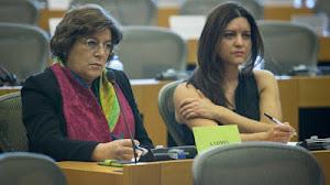 Os deputados PORTUGUESES de SOROS na União Europeia