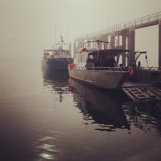 Whale watch boats in Gustavus