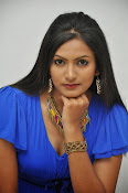 swetha varama at gang of gabbar singh-thumbnail-18