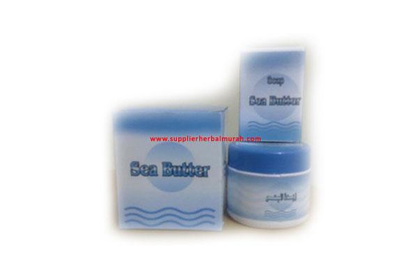 Sea Butter Cream  Pemutih dan Penghilang Bekas Luka
