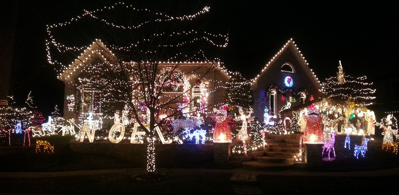 We took a drive by this house in Medinah last evening. The photo does ...