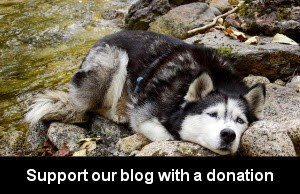 http://paineairport.com/donate.htm