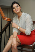 Glamorous Meenakshi Dixit Photos-thumbnail-15