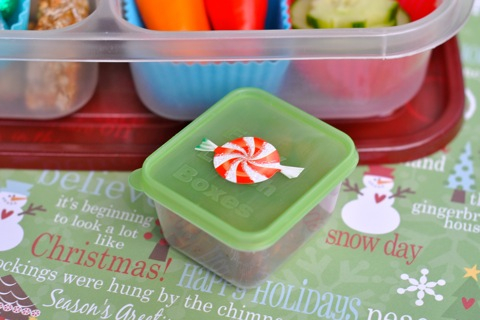 Christmassy Santa Claus Bento School Lunch in EasyLunchboxes