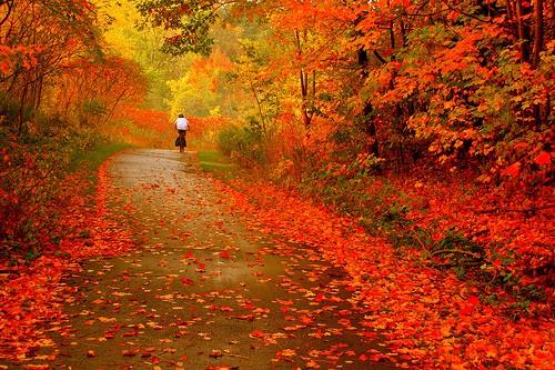 Landschaften nature beauty