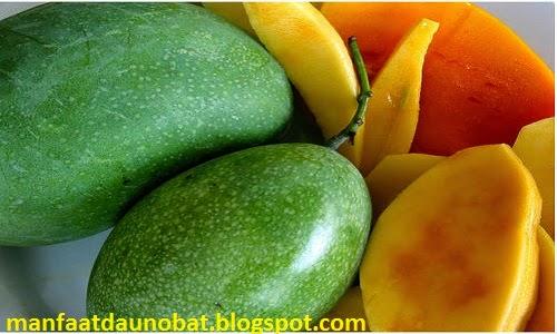 manfaat khasiat buah mangga