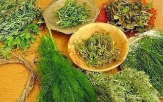 Bitkisel  Ürünlerle Zayıflama Yolları