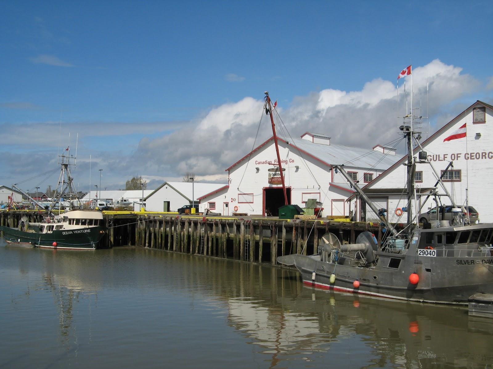 Powell River Books Blog: Steveston Harbour