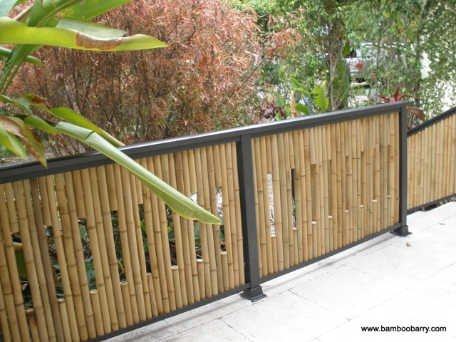 Bamboo Decorative Fences