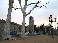 La Plaça Joan Ragué amb els plàtans majestuosos i el campanar de l'església de Sant Vicenç de Gualba