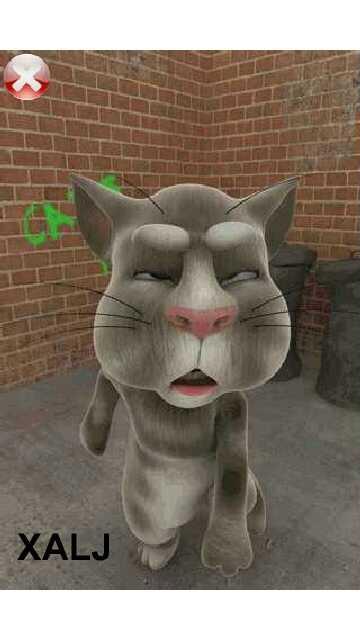 Download Talking Tom Cat 3 Java 240X400