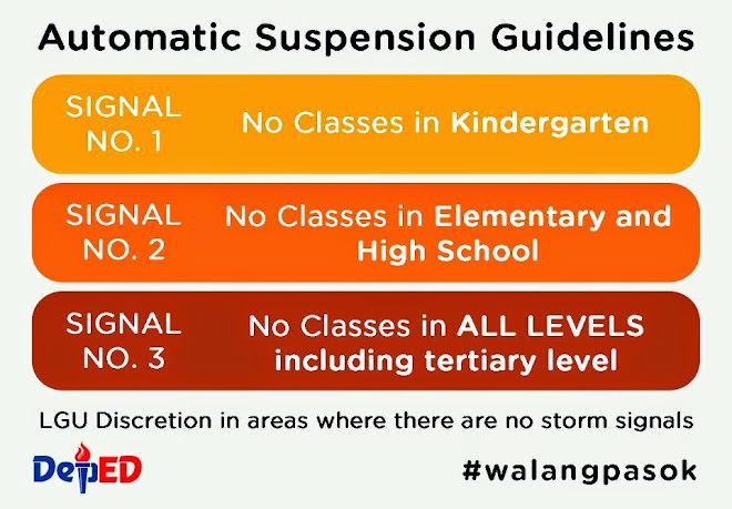 Suspension Guidelines