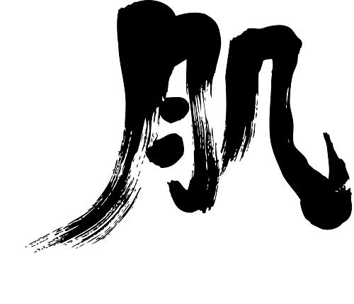 skin in brushed Kanji calligraphy