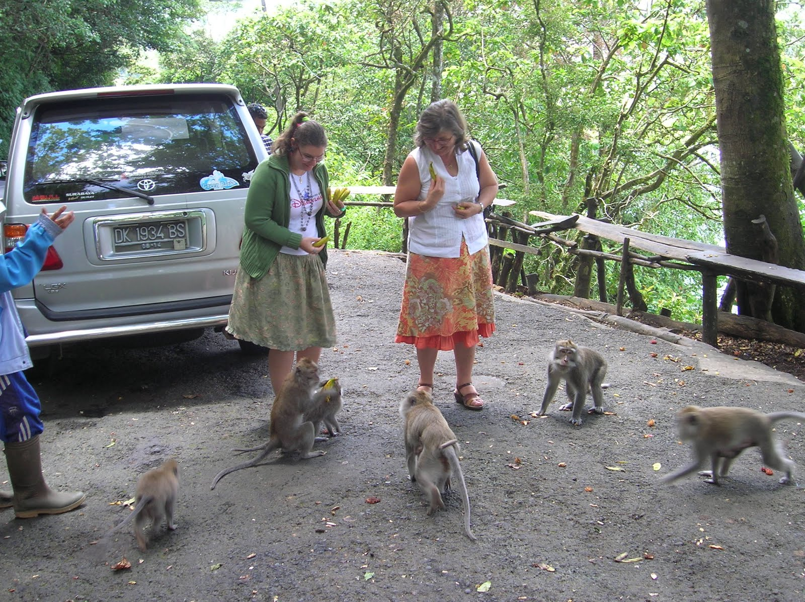 Monos, Isla de Bali,Indonesia, vuelta al mundo, round the world, La vuelta al mundo de Asun y Ricardo